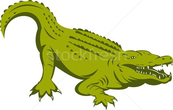 аллигатор голову иллюстрация ретро-стиле ретро Сток-фото © patrimonio