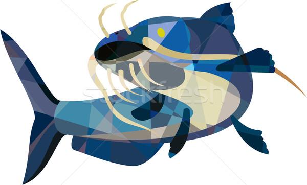 Boue chat faible polygone style Photo stock © patrimonio