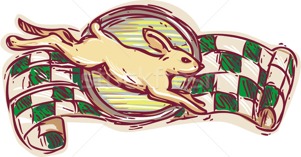 Rabbit Jumping Racing Flag Drawing Stock photo © patrimonio