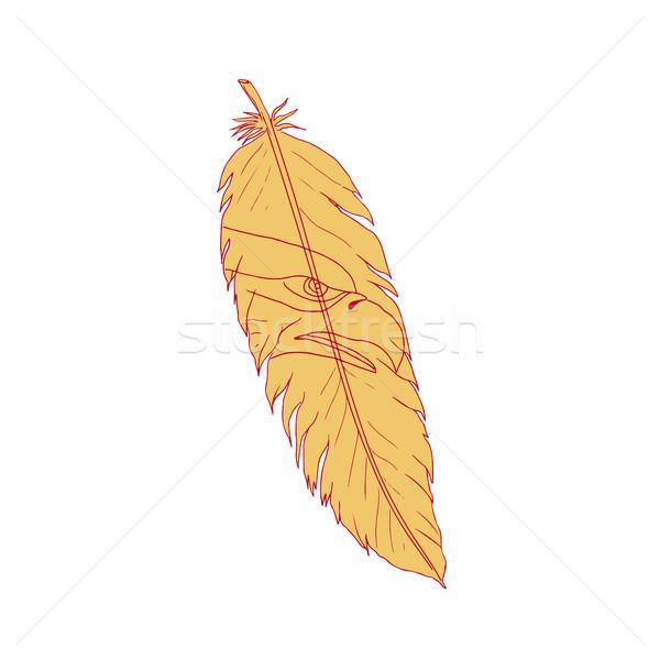 Sea Eagle Head Inside Feather Drawing Stock photo © patrimonio