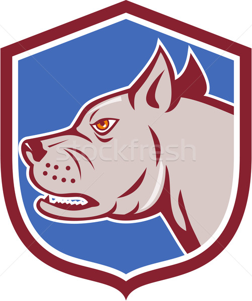 Mastiff Dog Mongrel Head Shield Cartoon Stock photo © patrimonio