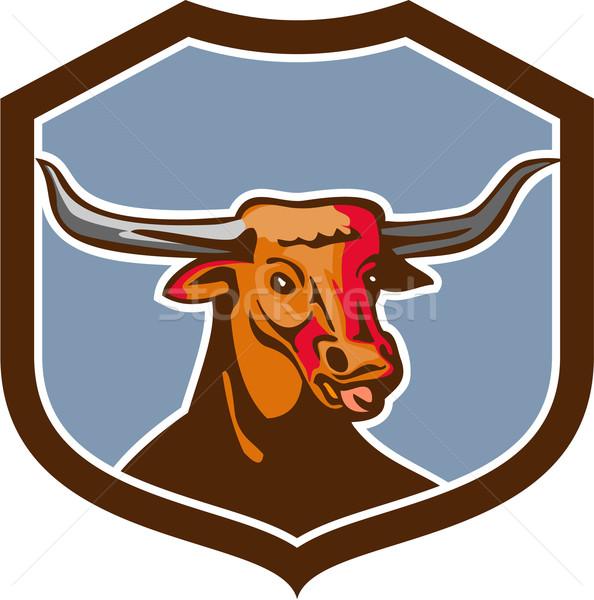 テキサス州 赤 牛 シールド レトロな 実例 ストックフォト © patrimonio