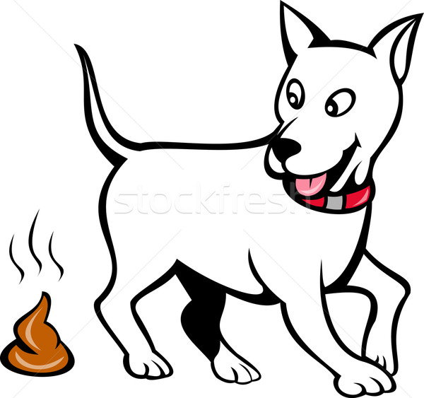 Stock photo: dog with poo