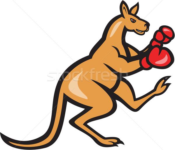 Kenguru rúgás boxoló box rajz illusztráció Stock fotó © patrimonio