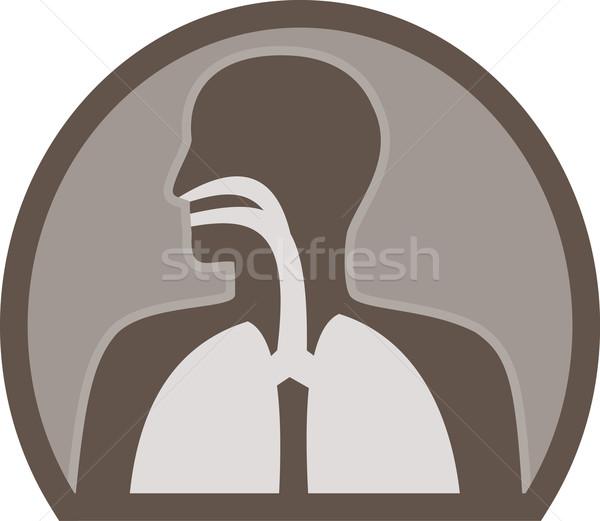 Anatomia umana respiratoria organo illustrazione figura Foto d'archivio © patrimonio