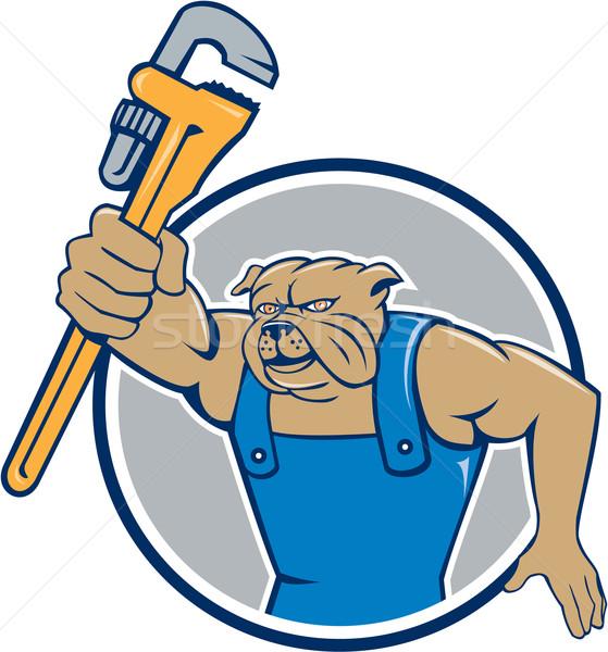 Bulldog Plumber Monkey Wrench Circle Cartoon Stock photo © patrimonio