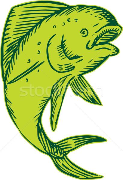 Dolphin Fish Jumping Etching Stock photo © patrimonio