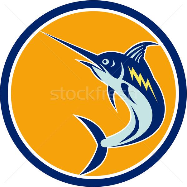 Mavi balık atlama daire Retro örnek Stok fotoğraf © patrimonio