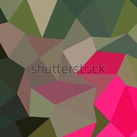 Kırmızı yeşil soyut düşük çokgen stil Stok fotoğraf © patrimonio