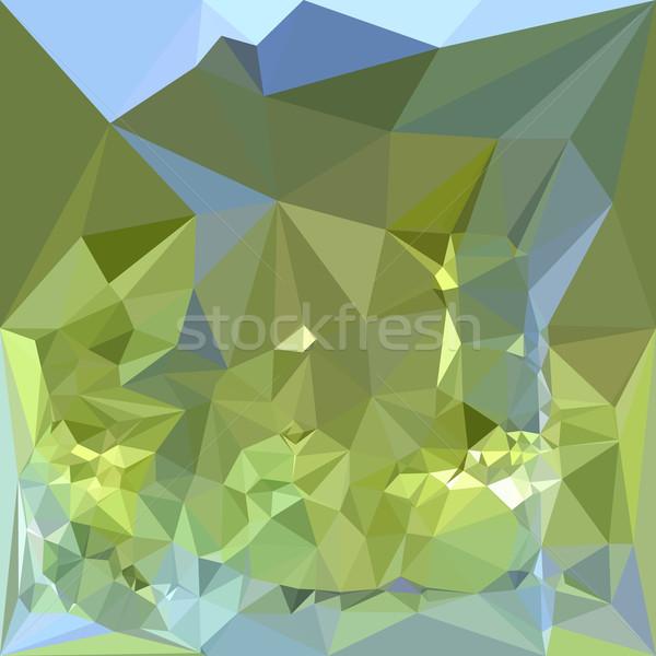 Verde resumen bajo polígono estilo ilustración Foto stock © patrimonio