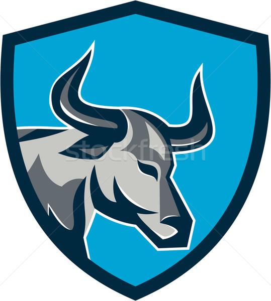 Texas Longhorn Bull Head Shield Retro Stock photo © patrimonio
