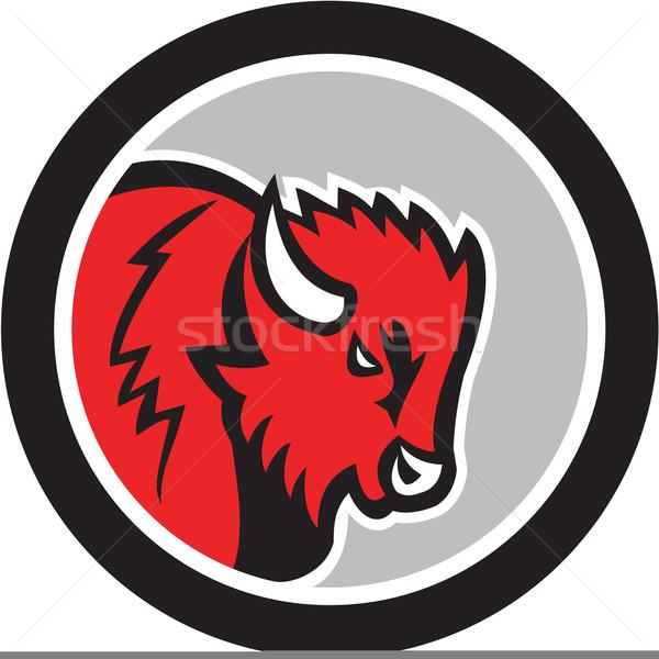 American Bison Buffalo Head Circle Retro Stock photo © patrimonio