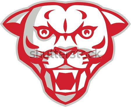 Cashmere Goat Head Retro Stock photo © patrimonio