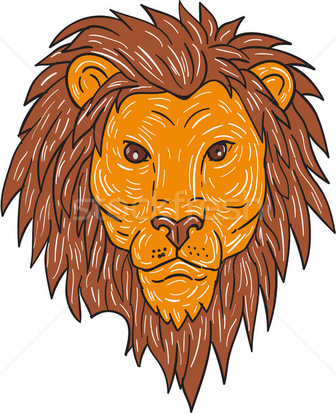Male Lion Big Cat Head Drawing Stock photo © patrimonio