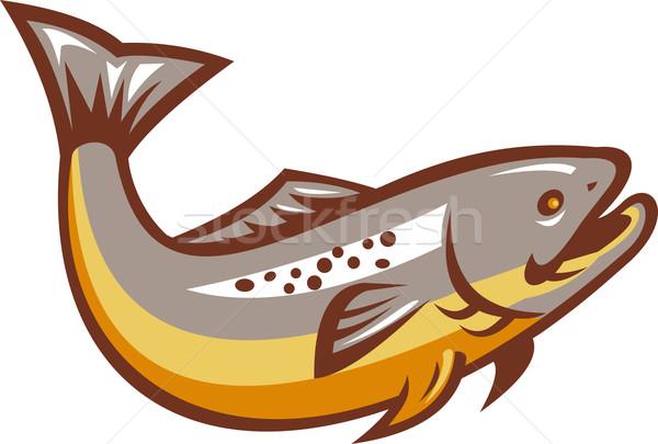 Foto stock: Truta · peixe · saltando · retro · ilustração · isolado
