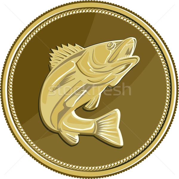 Moeda de ouro retro ilustração asiático mar baixo Foto stock © patrimonio