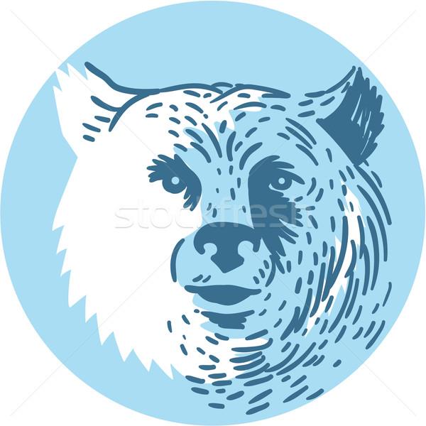 Bear Head Smiling Circle Drawing Stock photo © patrimonio