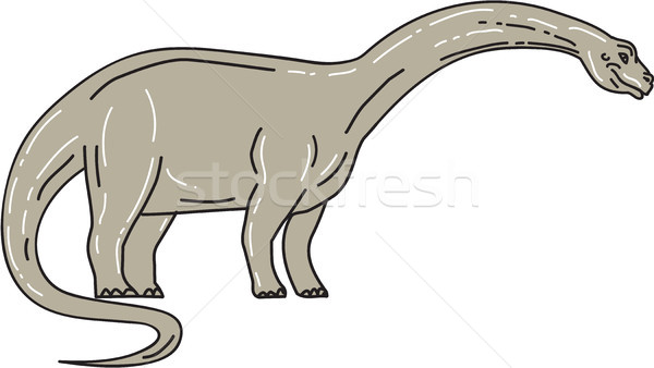 Stock photo: Brontosaurus Dinosaur Looking Down Mono Line