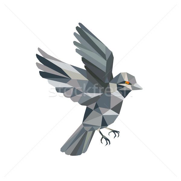 Old World Sparrow Low Polygon Stock photo © patrimonio