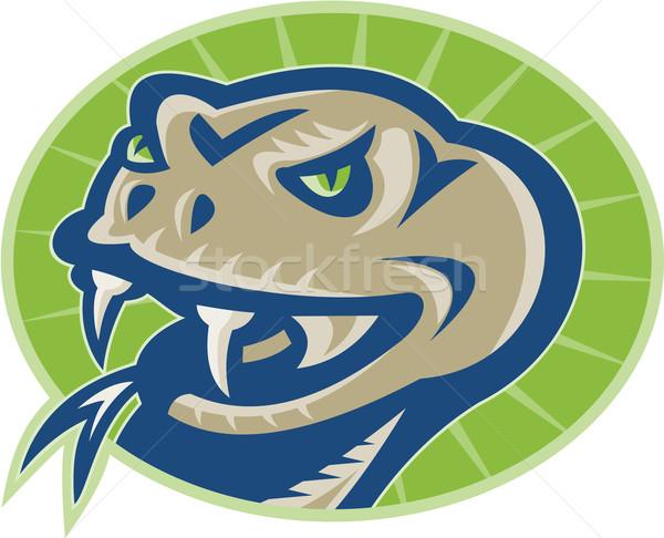 Viper Snake Serpent Mascot Head Stock photo © patrimonio