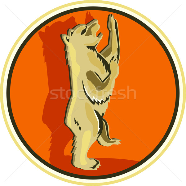 Stockfoto: Permanente · cirkel · retro · illustratie · grizzly