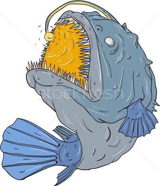 Anglerfish Swooping up Lure Drawing Stock photo © patrimonio
