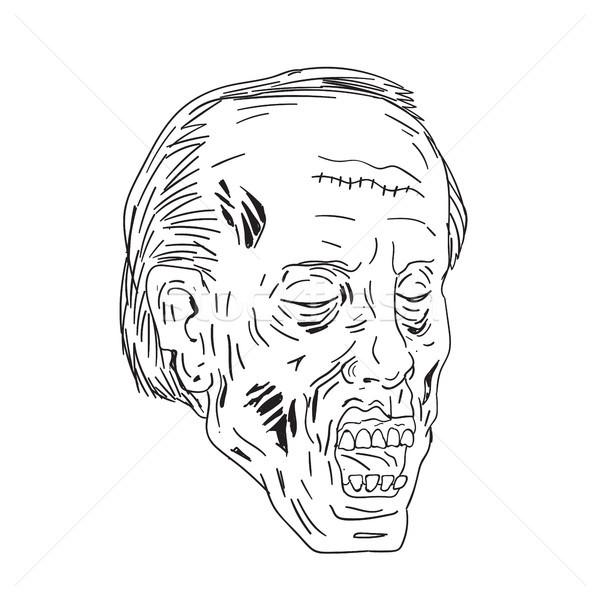 зомби голову рисунок эскиз стиль Сток-фото © patrimonio