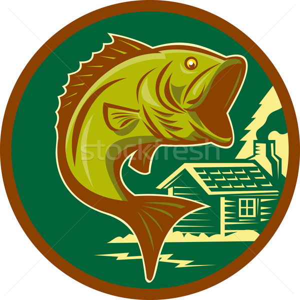 Basse poissons sautant cabine illustration Photo stock © patrimonio