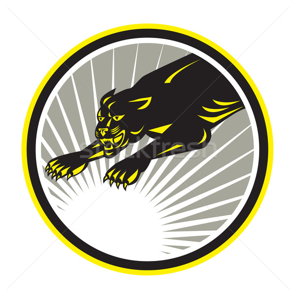 Panther Big Cat Growling Circle Stock photo © patrimonio