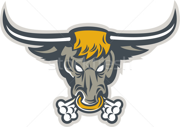 Texas Longhorn Bull Head Front Stock photo © patrimonio