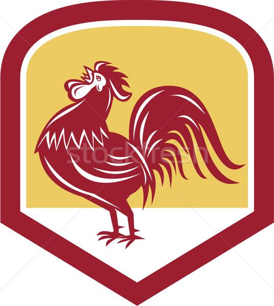 Rooster Cockerel Crowing Side Woodcut Shield Stock photo © patrimonio