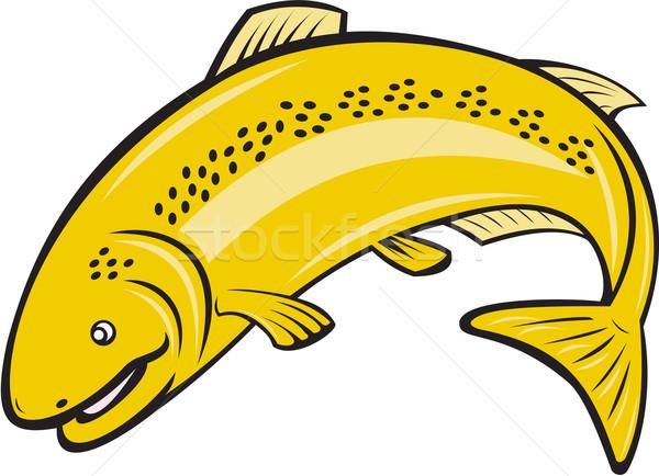 Trucha arco iris peces saltar Cartoon ilustración Foto stock © patrimonio