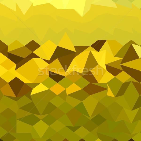 Mountain Abstract Low Polygon Background Stock photo © patrimonio