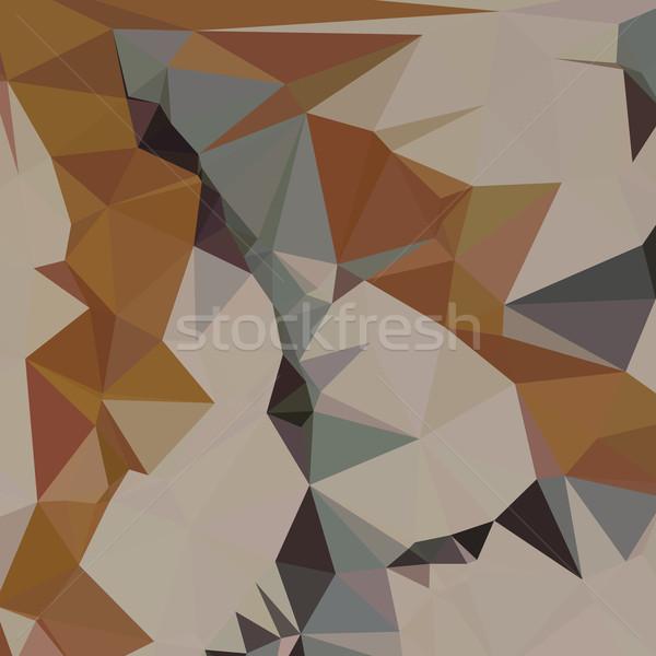 Cornsilk Brown Abstract Low Polygon Background Stock photo © patrimonio