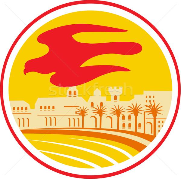 Falcão silhueta oval retro ilustração falcão Foto stock © patrimonio