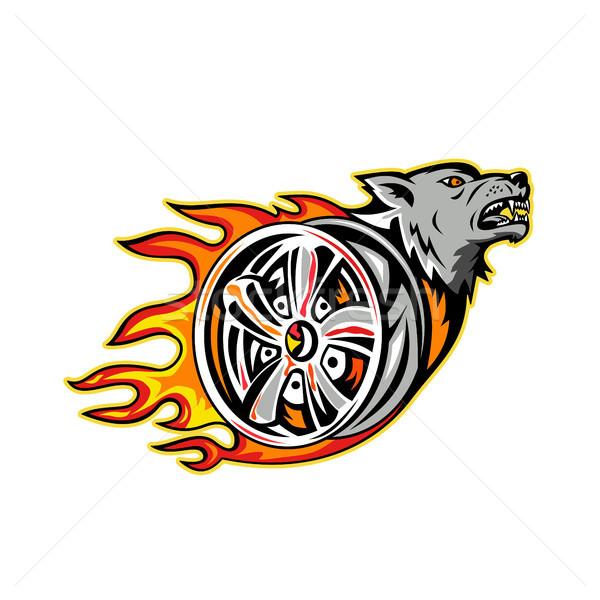 волка пылающий колесо иллюстрация сердиться Сток-фото © patrimonio