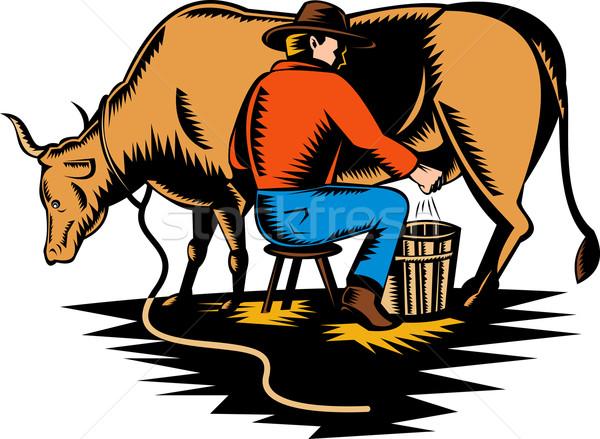 farmer milking cow Stock photo © patrimonio