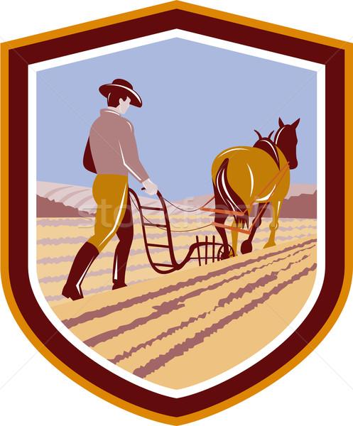 Gazda ló farm mező címer retro Stock fotó © patrimonio