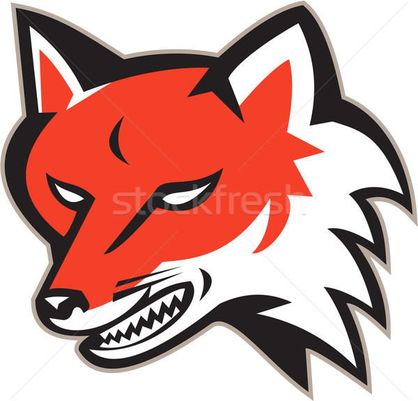 Rouge Fox colère tête rétro illustration Photo stock © patrimonio