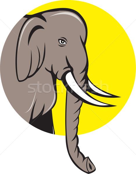 Indiai elefánt fej rajz illusztráció oldal Stock fotó © patrimonio