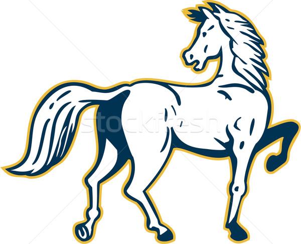 Horse Prancing Rear View Retro Stock photo © patrimonio