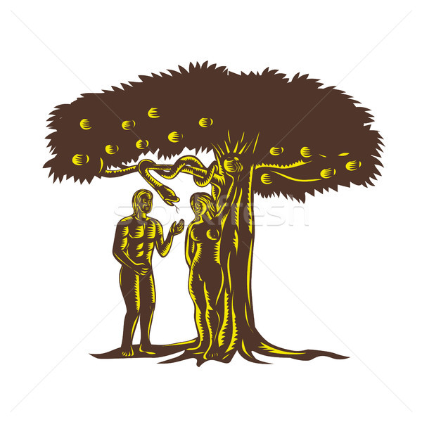 Adam and Eve Apple Serpent Woodcut Stock photo © patrimonio