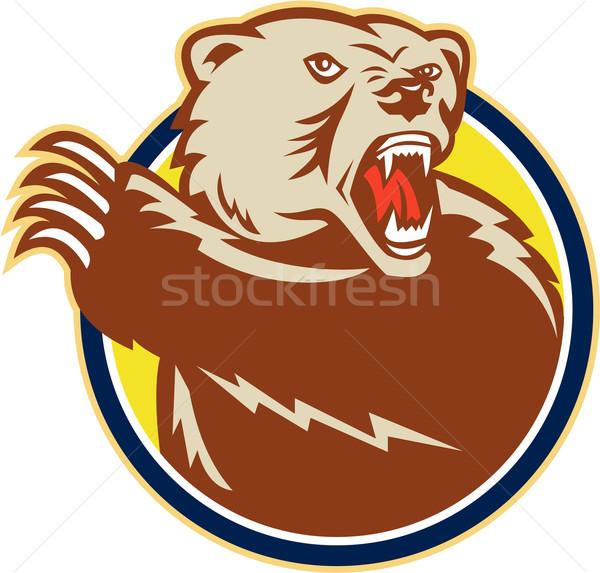 Poot retro illustratie grizzly bruine beer Stockfoto © patrimonio