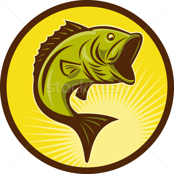 Largemouth Bass fish jumping Stock photo © patrimonio