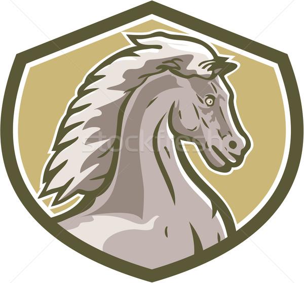 Colt Horse Head Side Shield Retro Stock photo © patrimonio