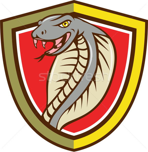 Cobra Viper Snake Head Attacking Shield Cartoon Stock photo © patrimonio