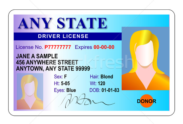generic female state driver license Stock photo © patrimonio