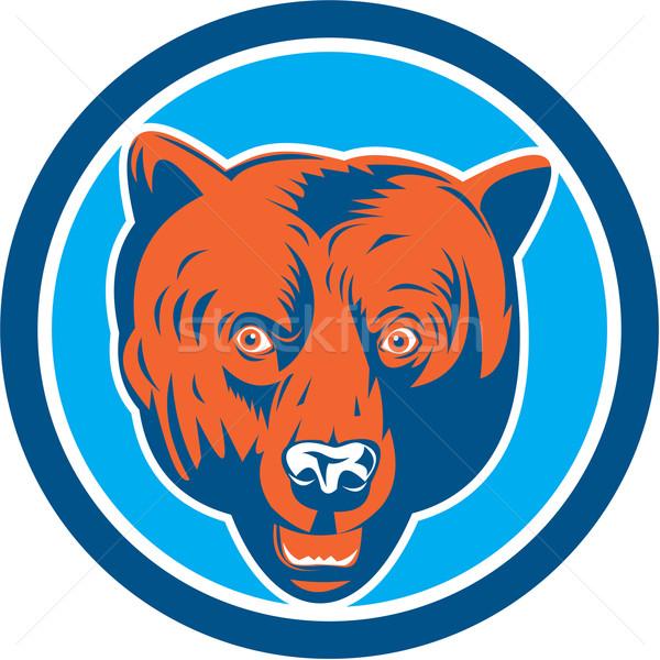 Grizzly Bear Head Front Circle Retro Stock photo © patrimonio