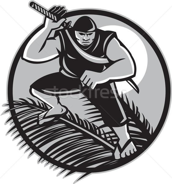 Ninja top kokosnoot cirkel illustratie Stockfoto © patrimonio