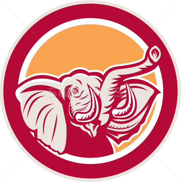 Elephant Head Tusk Circle Retro Stock photo © patrimonio
